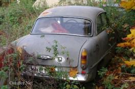 Gebrauchtwagen - 6068