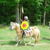 Kavallerie - 8849