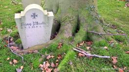 Kiel - Nordfriedhof 3431