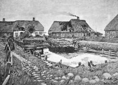 Hallig Oland - Fething