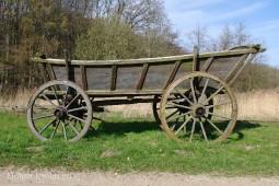Pferdewagen - 8386
