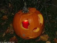 Halloween-Kürbis V