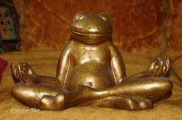 Guru-Meditation 8442