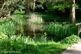 Botanischer Garten Kiel - 1150