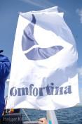 Comfortina - 2140