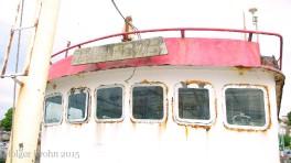 Zwaardvis - 4241