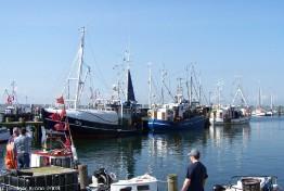 Burg - Hafen