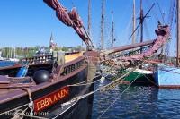 Ebba Aaen -8381