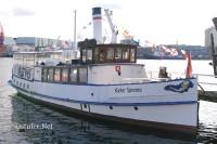 Kieler Sprotte - 5624