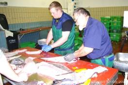 Fischverkauf - 5560