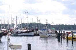 Fischkutter SK 14 - 9795