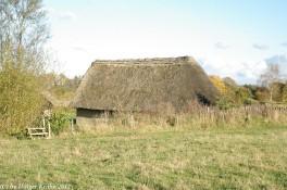 Steinzeit-Siedlung I