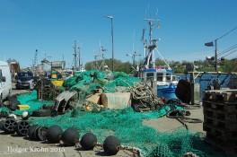 Fischereihafen - 7534