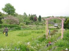 Kleingärten Langsee - 9593