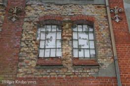 Schwedendamm - Ruine 6471