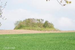 Hünengrab - 8948