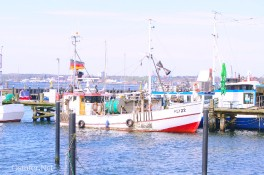 Fischkutter Maria - 8763