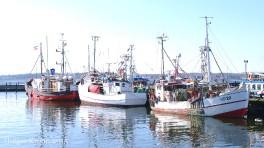Fischkutter - 7989