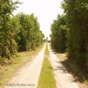 Feldweg - H1865