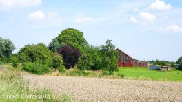 Bauernhof - 6184