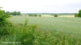 Weites Land - 3384